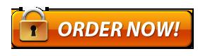 Order TheftDefender Now!